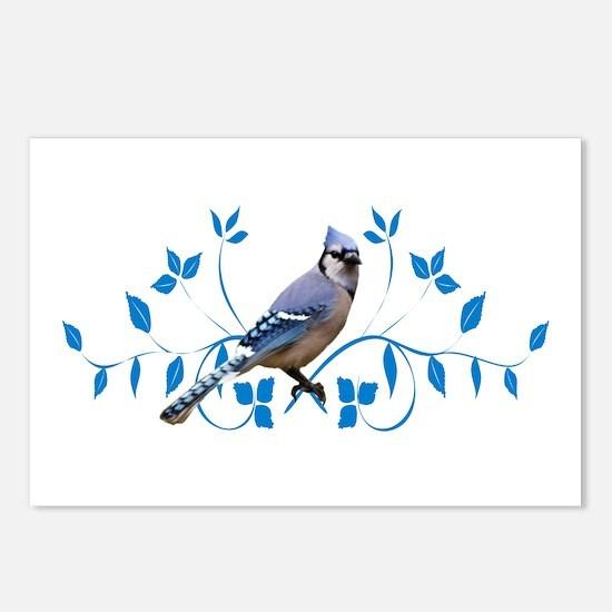Regal Blue Jay Postcards (Package of 8)