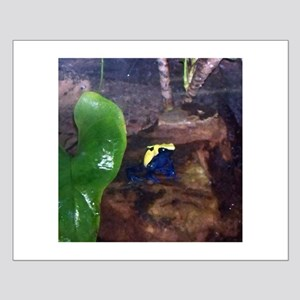 poison dart frog Small Poster