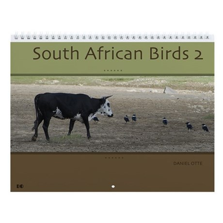 South African Birds 2 Wall Calendar