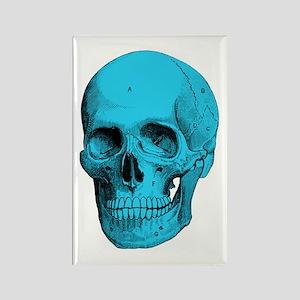 Human Anatomy Skull Rectangle Magnet