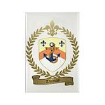 THOMAS Family Crest Rectangle Magnet