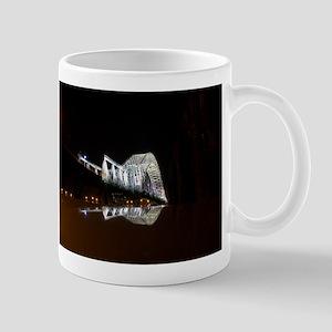 100_0079 Mugs