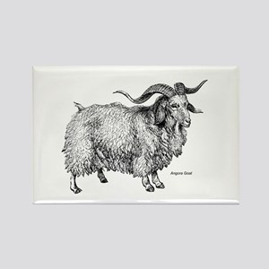 Angora Goat Rectangle Magnet