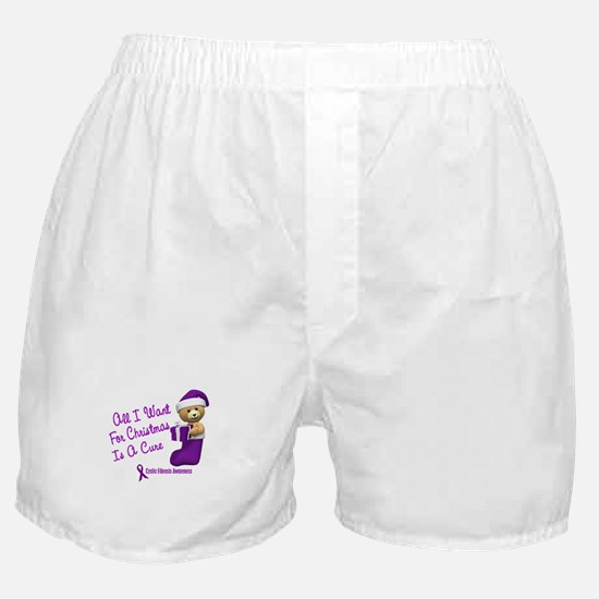 Bear In Stocking 1 (Cystic Fibrosis) Boxer Shorts
