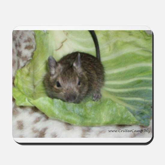 Baby Degu Mousepad