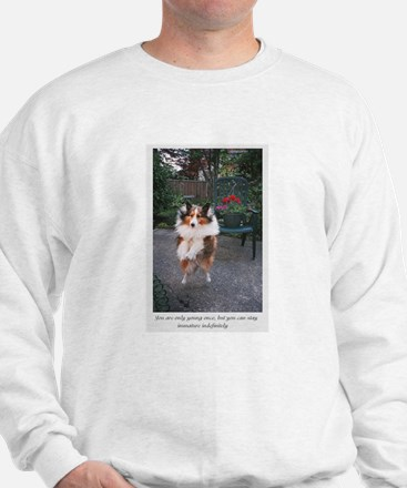 You are only young once Sweatshirt