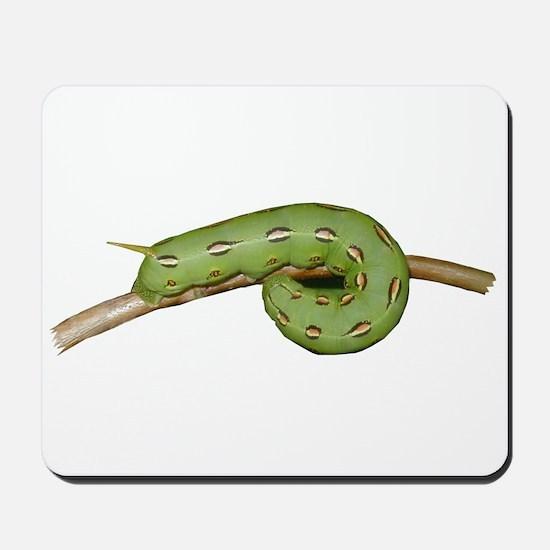 Helaine's Hornworm Mousepad
