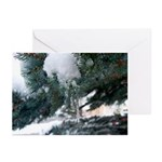 5x7 Note Cards (Pk of 10) Icy Morning