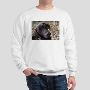 Chocolate Lab C Sweatshirt