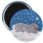 Rabbit in Winter snow Magnet