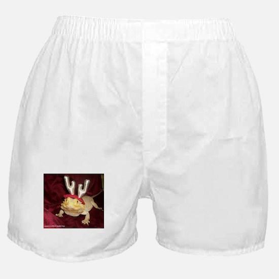 Reindeer Beardie Boxer Shorts