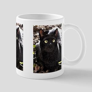 Black Cats Rule Watercolor Mug