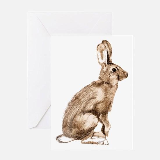 Curious Rabbit Greeting Card