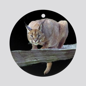Caracal Cat Crouching Ornament (Round)
