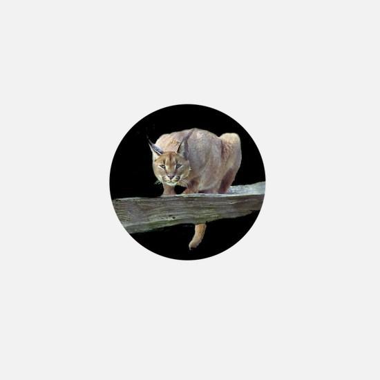 Caracal Cat Crouching Mini Button