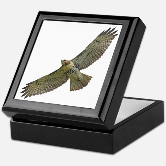 Soaring Red-tail Hawk Keepsake Box
