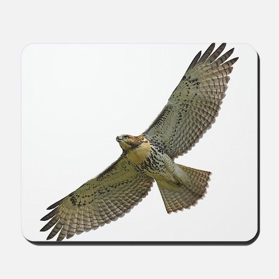 Soaring Red-tail Hawk Mousepad