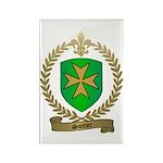 SANTIER Family Crest Rectangle Magnet (10 pack)
