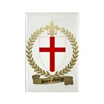 SAINT-GEORGE Family Crest Rectangle Magnet (10 pac