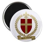 SAINT-ETIENNE Family Crest Magnet