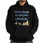 Best Therapy is a Visit Hoodie (dark)