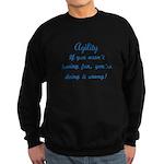 Dog Agility Fun v2 Sweatshirt (dark)