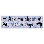 Ask Me About Rescue Dogs Bumper Sticker (10 pk)