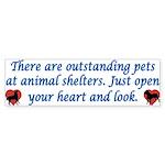 Open Your Heart Bumper Sticker (50 pk)