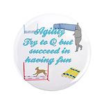 Succeed in Fun 3.5