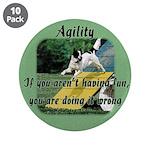 Agility Fun! 3.5