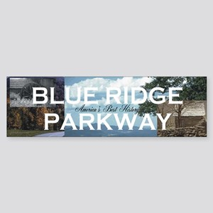 Blue Ridge Americasbesthist Sticker (Bumper 10 pk)