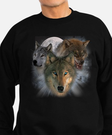 Watchful Eyes Sweatshirt (dark)