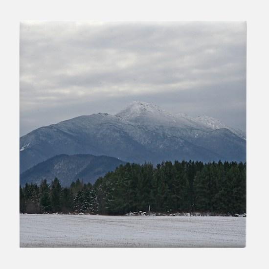 Scenic Adirondack Winter Tile Coaster