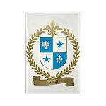 ROGER Family Crest Rectangle Magnet (10 pack)