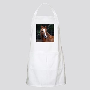 Chincoteague Pony BBQ Apron