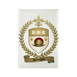 RODRIGUEZ Family Crest Rectangle Magnet (10 pack)