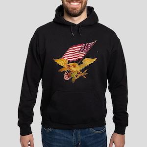 AMERICAN EAGLE Hoodie (dark)