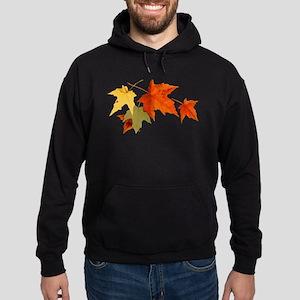 Autumn Colors Hoodie (dark)