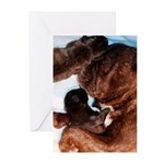 French Bulldog Greeting Cards (Pk of 20)