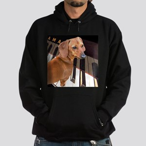 Genius Dachshund Dog Hoodie (dark)