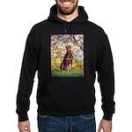 Spring / Doberman Hoodie (dark)