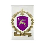 PINETTE Family Crest Rectangle Magnet (100 pack)