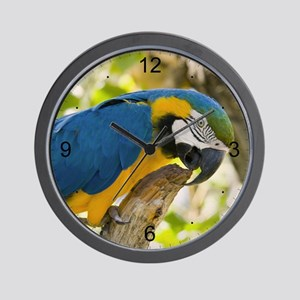 Blue & Gold Macaw Wall Clock