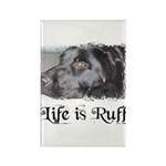 BLACK LAB LIFE IS RUFF Rectangle Magnet (100 pack)