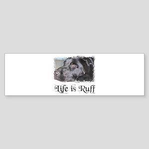 BLACK LAB LIFE IS RUFF Bumper Sticker