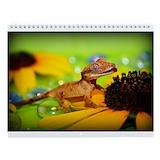 Gecko Wall Calendars