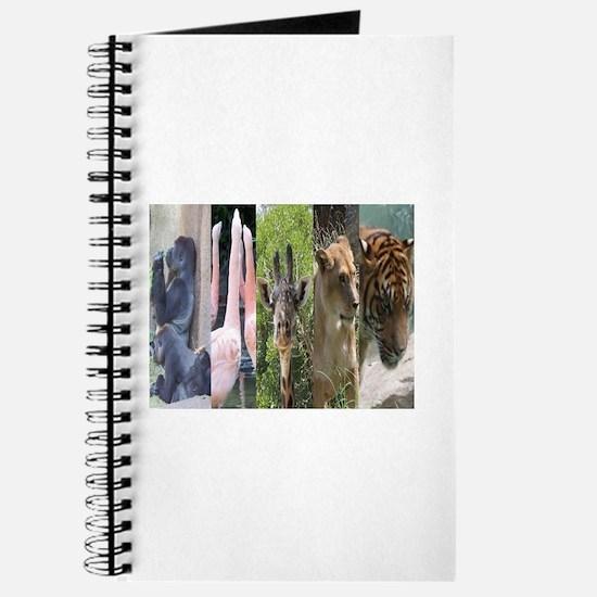 Wild Five Journal