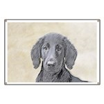 Flat-Coated Retriever Banner