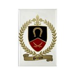 PETITPAS Family Crest Rectangle Magnet (10 pack)