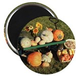 "Fall Bounty 2.25"" Magnet (10 pack)"